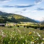 Slow Food für Kärnten: Südliche Wege zum  achtsamen Genuss