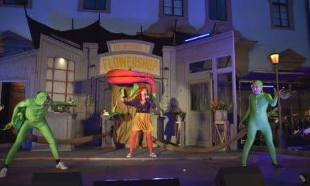 Das Schlosstheater Celle: barock – modern – weltoffen
