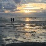 UNESCO Weltnaturerbe Wattenmeer – Cuxhaven mittendrin!