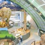 Museum Niederösterreich in St. Pölten: Wildnis Stadt
